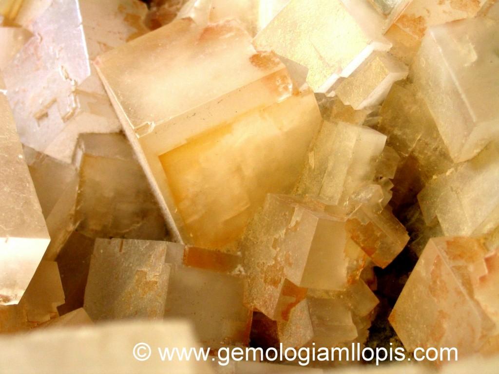 Cristales cúbicos superpuestos de halita. Presentan zonas de color paralelas a las caras del cubo.