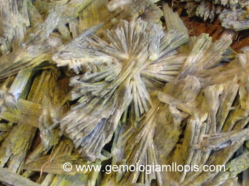 Cristales de pirofilita de aspecto fibroso-radiales, en disposición de rosetas o abanicos.