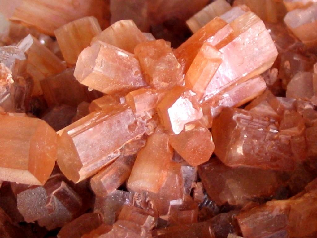 Rosetones de cristales de aragonito