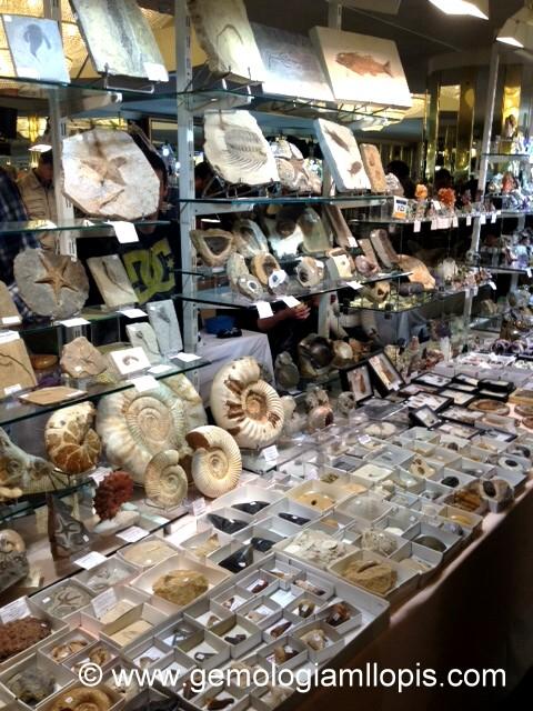 Minerval 2012 puesto de minerales y fósiles