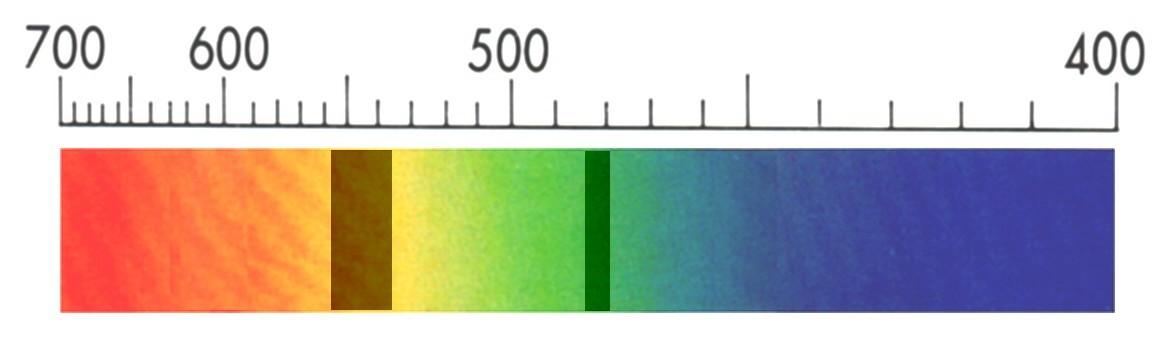 Espectro de absorción de un ejemplar de color azul